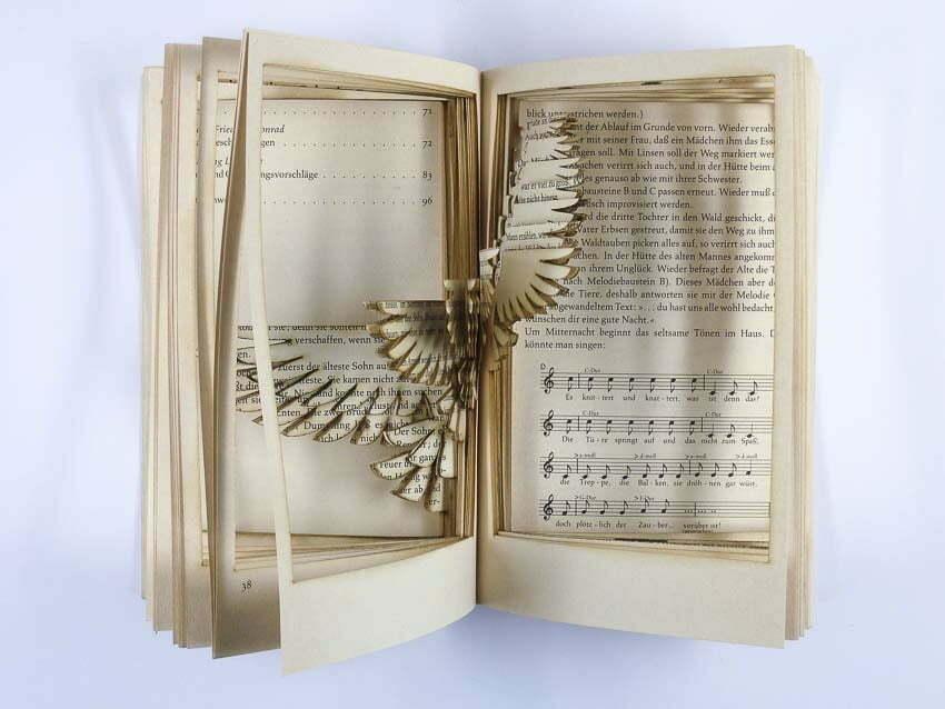 Cutting Books Bird Work Robin Hanhart